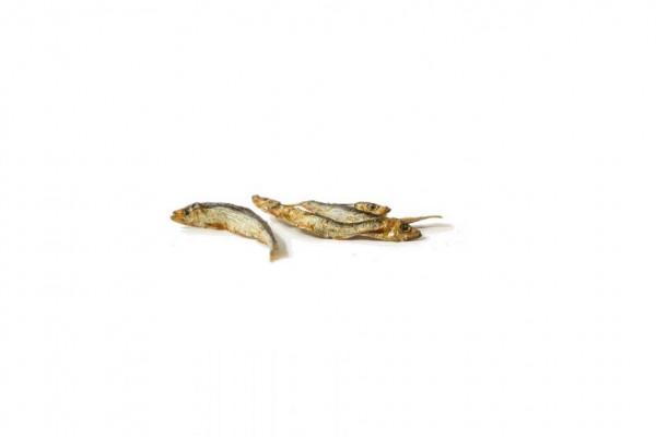 DIANA Trockenfisch klein