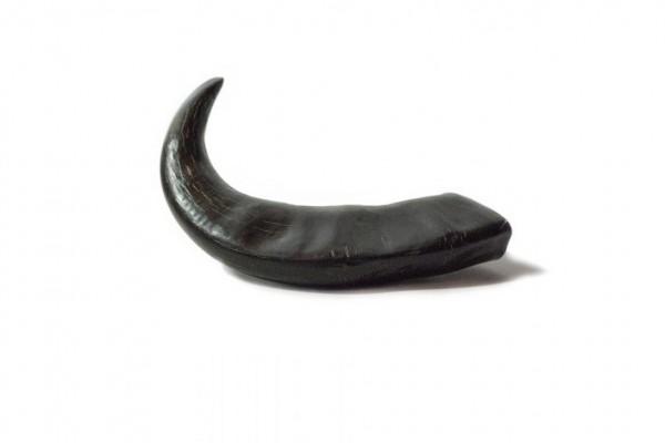 DIANA Büffelhorn - 19 - 22cm